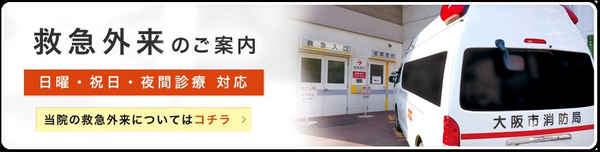 救急外来【日曜・祝日・夜間診療/内科・整形外科】