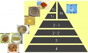 嚥下調整食分類2013